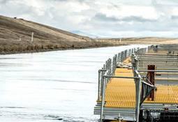 """Marel presenta resultados de software para """"salmón de alta calidad"""" (video)"""