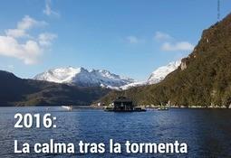 """Salmonexpert: ya está disponible nueva edición de balance """"2016: La calma tras la tormenta"""""""
