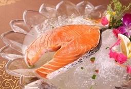 Descubren nueva forma de calcular la toxicidad de un pescado