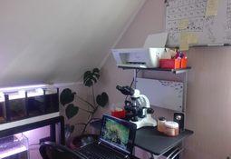 Puerto Varas: Nuevo laboratorio para monitoreo ambiental