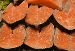 Nuevo estudio en Chile detalla aporte de omega 3 en etapas claves de la vida