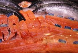 """FAO: """"Nuevas regulaciones chilenas limitan crecimiento de oferta de salmón"""""""