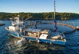 Steinsvisk adelanta novedades en stand de Aquasur