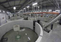 Construirán piscicultura de recirculación más grande del mundo