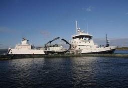 Armasur y empresas de wellboats rechazan haber cometido colusión