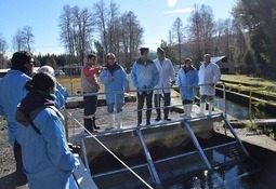 Expertos mexicanos visitan piscicultura Catripulli
