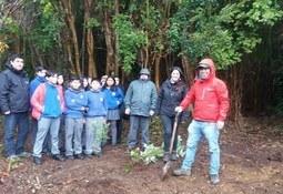 Sealand realiza actividad de reforestación