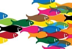 OCDE lanza plataforma de innovación para pesca y acuicultura