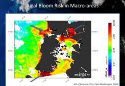 Con tecnología satelital monitorean marea roja