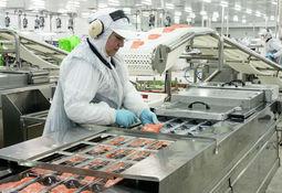 Productor de salmón logra ubicarse como segunda empresa más rentable de Chile