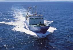 Respaldan proyecto sobre habitabilidad de embarcaciones