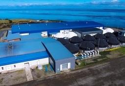 Sealand Aquaculture obtiene certificación internacional BAP