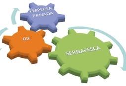Nueva herramienta de gestión sanitaria: Implementación de compartimentos en acuicultura.