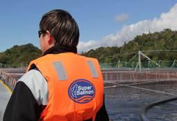 Los Fiordos certifica un cuarto de sus centros bajo ASC