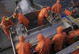 ¿Cómo mejorar las prácticas acuícolas?