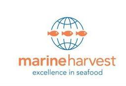 Marine Harvest Group certificará todo su salmón bajo ASC al 2020