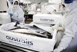 Chinese investor completes Australis takeover
