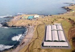 Public backing for new wrasse hatchery