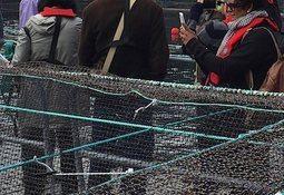 BC salmon farmers welcome public