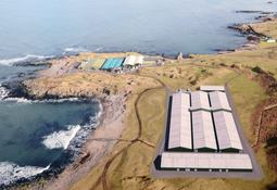 Planners give green light for wrasse hatchery