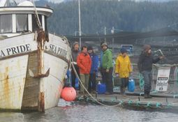 Protesters ordered off Canadian fish farm