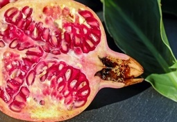 Pomegranate bears fruit in bid to keep fillets fresh