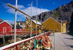 Scottish aquaculture on the agenda at Lofoten