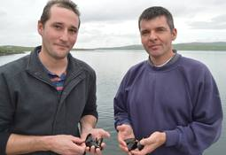 Spring Bay boost for Scots mussel hatchery project