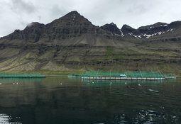 Island åpner for stor produksjonsøkning