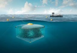 Subsea farming project scaled down