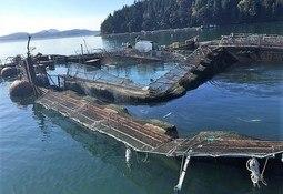 Cooke Aquaculture se compromete con el estado Washington