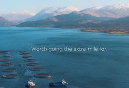 Going the extra mile to sell salmon health message