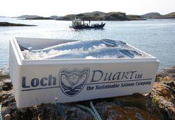 Loch Duart makes Rural Awards shortlist