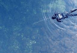 OURO har redusert innslag av rømt oppdrettsfisk i elvene