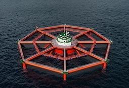Salmar vil utvikle enda større havmerd - har kjøpt seg inn i MariCulture AS