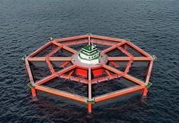 SalMar planea desarrollar centro de cultivo en alta mar más grande del mundo