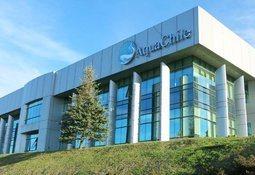 AquaChile concentra el 23% de los envíos de salmón chileno