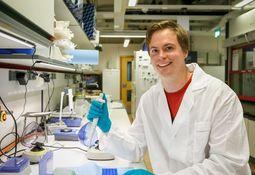 Har funnet cellene som bremser kjønnsmodning hos laks