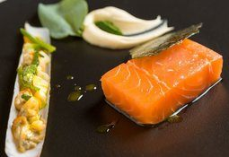 'Negligible' worm risk from Europe's farmed fish