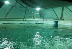 Philips Lighting instala primer sistema de fotoperiodo para piscicultura en Chile