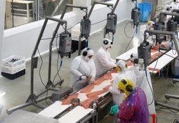 Estudio establece brechas ambientales y de derechos humanos en salmonicultura
