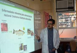 Puerto Montt: Alumnos aprendieron sobre la vida de los salmones