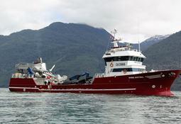 TDLC exige información sobre mercado de wellboats acuícolas