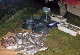 Puerto Aysén: Incautan cerca de una tonelada de trucha