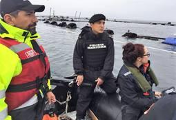 SMA notifica paralización de centro Punta Redonda de Marine Harvest
