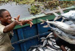 Exploring aquaculture's progress over 20 years