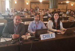 Destacan avances en certificación e inocuidad para el salmón chileno