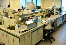 Chile: Fraunhofer inaugura instalaciones para fortalecer biotecnología