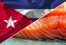 """Prochile: """"Las expectativas de compras de salmón en Cuba podrían incrementarse"""""""