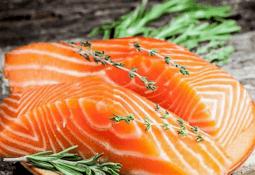 Cargill expone avances de su proyecto Meat Q en el salmón